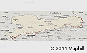 Shaded Relief Panoramic Map of Sachsen, semi-desaturated