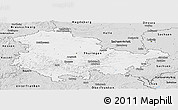 Silver Style Panoramic Map of Thüringen