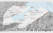 Gray 3D Map of Izabal