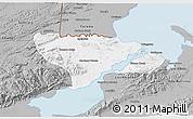 Gray 3D Map of Livingston