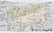 Shaded Relief 3D Map of Zacapa, desaturated
