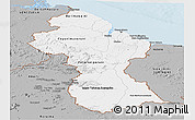 Gray Panoramic Map of Guyana