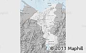 Gray Map of Cortes