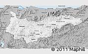 Gray 3D Map of Yoro