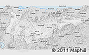 Silver Style 3D Map of Yoro