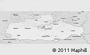 Silver Style Panoramic Map of Baranya