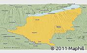 Savanna Style Panoramic Map of Somogy
