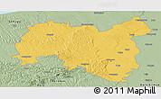 Savanna Style Panoramic Map of Tolna