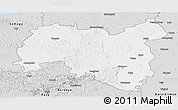 Silver Style Panoramic Map of Tolna