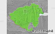 Political 3D Map of Zala, desaturated