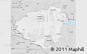 Silver Style 3D Map of Zala