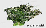 Satellite Panoramic Map of Dibang Valley (Anni), single color outside