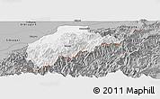 Gray Panoramic Map of Tirap