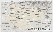 Shaded Relief Panoramic Map of Bihar, semi-desaturated