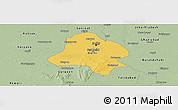 Savanna Style Panoramic Map of Delhi