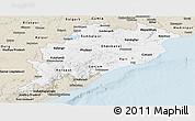 Classic Style Panoramic Map of Orissa
