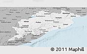 Gray Panoramic Map of Orissa