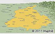 Savanna Style Panoramic Map of Punjab