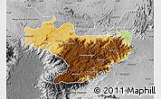 Physical Map of Nilgiris, desaturated