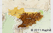 Physical Map of Nilgiris, lighten
