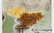 Physical Map of Nilgiris, semi-desaturated