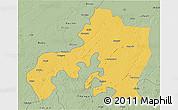 Savanna Style 3D Map of Jhansi