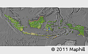 Satellite 3D Map of Indonesia, desaturated
