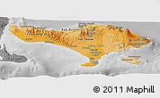 Political Shades Panoramic Map of Bali, desaturated