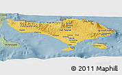 Savanna Style Panoramic Map of Bali