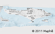 Silver Style Panoramic Map of Bali