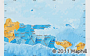 Political Shades Map of East Java
