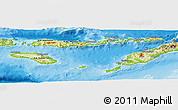Physical Panoramic Map of East Nusa Tenggara