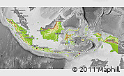 Physical Map of Indonesia, desaturated
