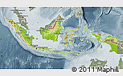 Physical Map of Indonesia, semi-desaturated