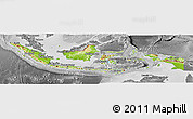 Physical Panoramic Map of Indonesia, desaturated