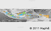 Political Panoramic Map of Indonesia, desaturated