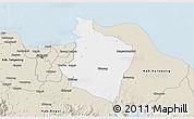 Classic Style 3D Map of Kab. Bekasi