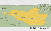 Savanna Style Panoramic Map of Wasit
