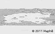 Gray Panoramic Map of Limerick