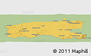 Savanna Style Panoramic Map of Limerick, single color outside