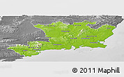 Physical Panoramic Map of South East, desaturated