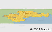 Savanna Style Panoramic Map of Waterford, single color outside