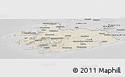 Shaded Relief Panoramic Map of South West, desaturated