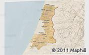 Satellite 3D Map of Central District, lighten