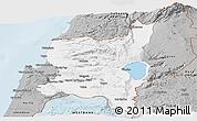 Gray Panoramic Map of Northern