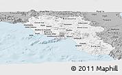 Gray Panoramic Map of Campania