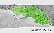 Political Shades Panoramic Map of Campania, desaturated