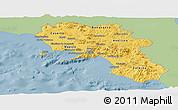 Savanna Style Panoramic Map of Campania, single color outside