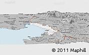 Gray Panoramic Map of Trieste