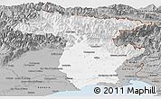 Gray Panoramic Map of Udine